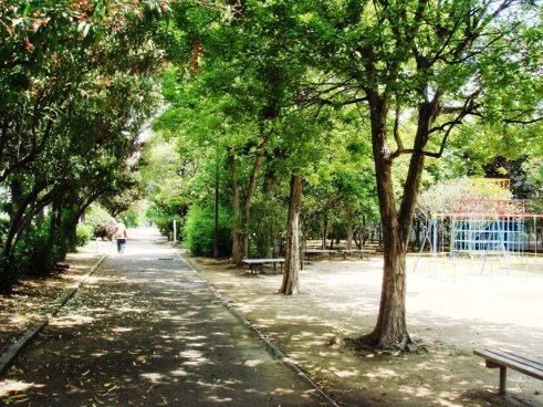 土居川公園