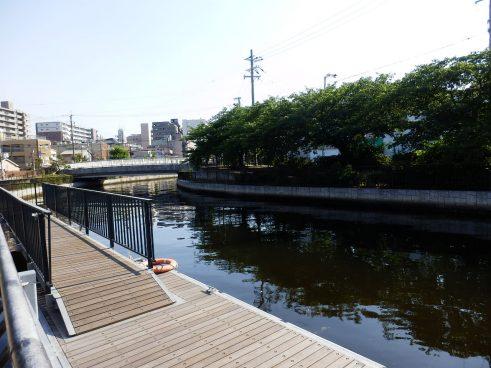 内川(桟橋)